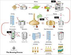 The Brewing Process Diagram - Brookston Beer Bulletin