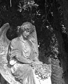 Taken at Holy Cross Cemetery in Colma CA. | chance | Flickr