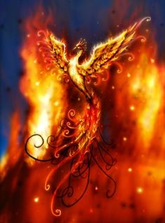 Phoenix rising from the ashes...my ultimate tattoo... This is the phoenix I wanted.