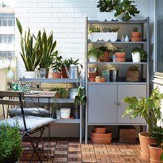Utilisez votre coin de verdure pour faire entrer la couleur sur le balcon