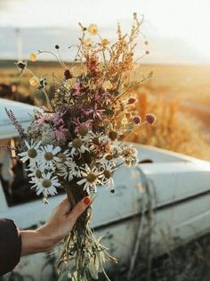 """""""there is a sunrise and a sunset in every day and you can choose to be there for it. you can put yourself in the way of beauty"""" - Reece… Fall Flowers, My Flower, Beautiful Flowers, Flower Aesthetic, All Nature, Planting Flowers, Greenery, Flower Arrangements, Nature Photography"""