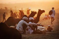 Pushkar Camel Fair, Rajastan, India