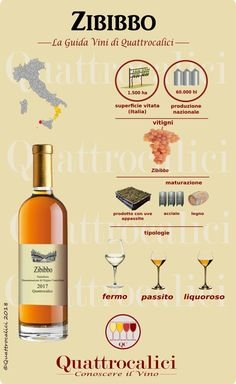 Brandy and Wine. Top Tips And Advice For Picking The Perfect Wine. There is much to know about wine, from which goes with a meal, to which wine is best for an event. Pinot Noir Wine, Wine Searcher, Wine Magazine, Wine Vineyards, Red Wine Glasses, Wine Sale, Wine Guide, Spiritus, Expensive Wine