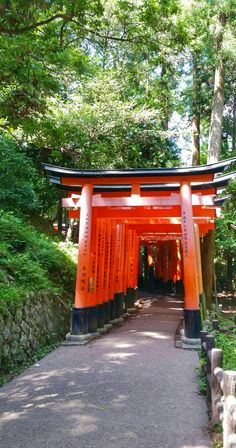 japan travel tips. things to do in kyoto japan. places to visit in japan. world bucket list destinations. Kyoto Map, Tokyo To Kyoto, Tokyo Japan Travel, Japan Travel Tips, Asia Travel, Japan Travel Photography, Nature Photography, Kyoto Travel Guide, Kyoto Itinerary