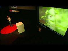 TEDxAmsterdam 2011 - David Lentink  The art of flying