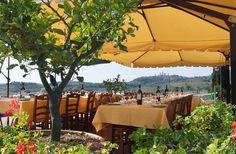 World's Best Places to Dine on a Farm, Fattoria Poggio Alloro, San Gimignano, Italy (Tuscany) | Fodors