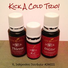 These 3 little gems will help get you back on your feet in no time! DiGize for upset tummy (dilute with carrier and rub on abdomen), R.C. for respiratory support (diluted drop on chest) and Thieves.. (rubbed on feet, drink in tea, diffused in air). No more sickies!! #youngliving #essentialoils