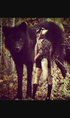 Big ass wolf walks in to camp in woods. Me: ohmmergerd its a big wolfy. Does the wolfy want some steak? Campmates: AAAAHHHHHH BIG WOLF!!! RUN AWAY! Me: Pussy 'cats'. Ill name u Shadow. Okay handsome wolfy?
