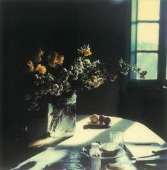 Mundo Tarkovski: un viaje de las polaroids al cine y por la literatura también