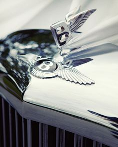 As a 5LINX® Platinum Senior Vice President you are awarded a monthly - Automobile Payment under two conditions. It must be silver, and it must be a BENTLEY!