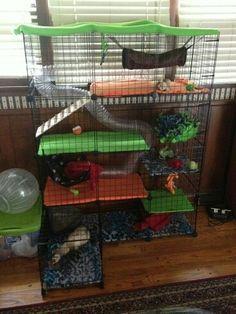 Diy ferret house