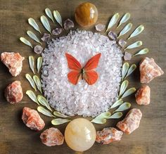 Golden Healer Quartz Rose Quartz Orange Calcite Dahlia petals and Appias Zarinda Crystal Grid by Woodlights Woudlicht Crystal Guide, Crystal Magic, Crystal Healing, Crystal Castle, Soul Healing, Chakra Crystals, Crystals And Gemstones, Stones And Crystals, Crystal Mandala