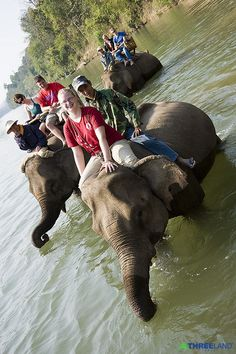 LAND OF THOUSAND ISLAND - LAND OF MILLION ELEPHANTS. 09 days / 08 nights - Hanoi - Halong - Tam Coc - Hanoi - Vientiane - Luang Prabang – Vientiane. Detail at http://threeland.com/vietnam_laos.htm    TOUR RATES from US $655