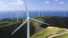 Renewable energy: In New Zealand, the country's strong winds are used to produce CO2 free electricity.