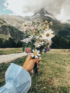 62 ideas for wall paper flowers photography beauty Photo Pour Instagram, Pinterest Instagram, Instagram Nails, Pinterest Board, Amazing Flowers, Wild Flowers, Beautiful Flowers, Paper Flowers, Bouquet Flowers