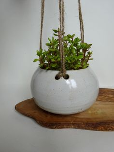 White Small Hanging Planter - Hanging pot for succulent plants - Handmade Ceramic hanging planter by viCeramics on Etsy https://www.etsy.com/listing/241457327/white-small-hanging-planter-hanging-pot