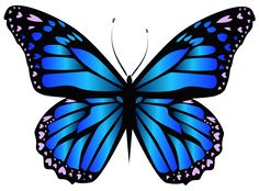 Blue Butterfly PNG Clipar Image                                                                                                                                                                                 More