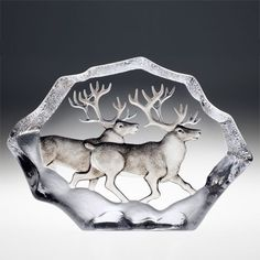 Mats Jonasson Etched Crystal Reindeers, Ltd Edition  The one I have has a single Caribou