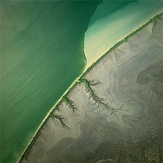A narrow belt of mangrove trees fringes the shore of the South Alligator River in the Kakadu National Park, Northern Territory, Australia, forming a frontier with the land. The water in the main river is deep and dark green. It meets the tributary, which carries a muddy sediment that stains it yellowish. Their differing densities prevent the two types of water from mixing.  Photo:  Bernhard Edmaier