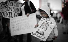 MadalBo: Monsanto no podrá producir soja transgénica