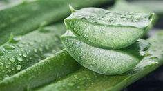 CELULITE NUNCA MAIS ➜ Elimine Para SEMPRE de forma 100% Natural Usando ISTO!