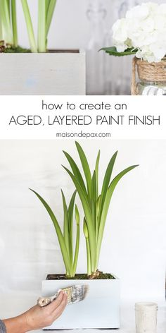Step by step tutorial to help you achieve an authentic looking aged, layered paint finish. Using a combination of chalk based paint and milk paint, this textured, antique look is simply beautiful! Chalk Paint Projects, Paint Ideas, Paint Finishes, Paint Stain, Diy Painting, Painting Styles, Garden Projects, Diy Projects, Furniture Painting Techniques