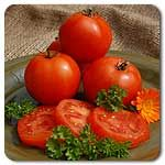 Organic Mountain Princess Tomato- Container hbit.  HEIRLOOM Mountain sweet goodness! Grown for generations in the Monongahela National Forest region of West Virginia. Fruits are 8-10 oz, orange-red and perfectly round with a mild tomato flavor. Very productive plants bear quick and early. Works well in containers. A customer favorite for six pack sales. Determinate (Lycopersicon esculentum)  Days to maturity: 68 days