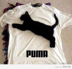 So that's where Puma got their logo from... ;)