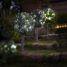 2 LED Topiary spheres