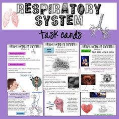 "Respiratory System Exhibition Lab Task Cards! You won't ""be-reathe"" how much your students will ""lobe"" them."