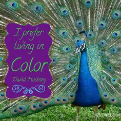 I prefer living in color. Quote by David Hockney. 44 Quotes to Inspire Your Creative Passion eBook by Sandra Watson. #InspirationalQuote #Creativity #Art #Hockney #Quotes