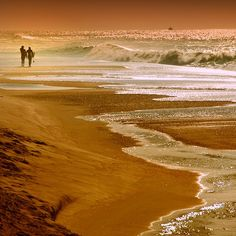 Marvelous golden color and ocean light.