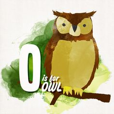 'O is for Owl. Hoot!' by Peter Costello... note the subtle shading... love.