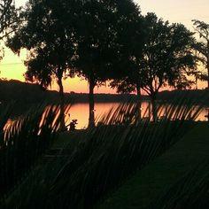 Evening in Savannah