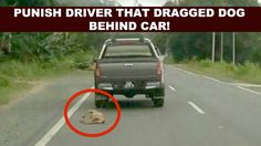 Punish heartless driver that dragged dog behind SUV for miles!                 A photo of a helpless dog tied to the back of an SUV-type vehicle with a rope has gone viral after being posted on social med...