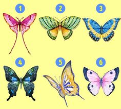 Types Of Butterflies, Beautiful Butterflies, Birth Month Personality, Personality Tests, Reto Mental, True Meaning Of Life, Symbols Of Freedom, Great Fear, Losing Faith