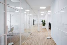 Febrero Studio has designed Qualitas Equity Partners offices located in the Salamanca district of Madrid, Spain. The office occupies a complete floor of a Corporate Office Decor, Corporate Offices, Modern Architecture House, Futuristic Architecture, Modern Houses, Glass Office, Modern Office Design, White Interior Design, Madrid