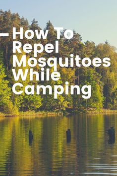 Mosquitoes are a part of summer. But use these tips to keep them away from your campsite. Cedarwood Oil, Cedarwood Essential Oil, Geranium Essential Oil, Diy Mosquito Repellent, Lemon Eucalyptus Oil, Citronella Candles, Camping Products, Camping Supplies, Diy Camping