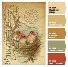Paint colors from Chip It! by Sherwin-Williams Inspired by a vintage postcard of pretty little robin birds in a nest. Vintage Cards, Vintage Postcards, Vintage Images, French Postcards, Images Victoriennes, Stencil, Art Postal, 3d Prints, Mail Art