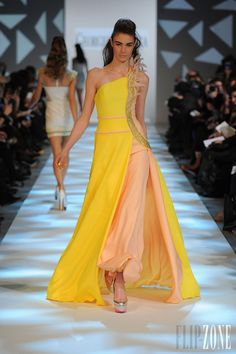 Georges Chakra - Haute couture - Printemps-été 2013 - http://www.flip-zone.com/fashion/couture-1/fashion-houses/georges-chakra-3353