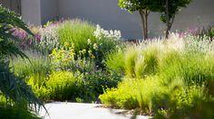 Jardín en la urbanización El Montecillo, Madrid : Urquijo-Kastner