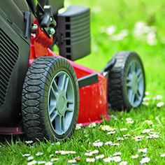 Mow Like A Pro -  Sometimes the grass really does seem greener on the other side of the neighbor's fence. There are several key elements to having a lush, healthy lawn - the type of grass, how well it's fed and watered, and how it's mowed. Read more...
