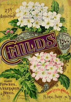 25th anniversary cover for 'Childs' Rare Flowers, Vegetables and Fruits' 1900 with an illustration of 'Mayflower Verbena.' John Lewis Childs. Floral Park. N.Y.  U.S. Department of Agriculture, National Agricultural Library archive.org