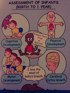 Assessment of Infants....I love these books, they make things stick!