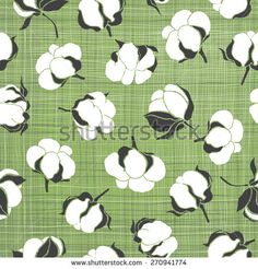 Cotton Plant Stock Photos, Images, & Pictures | Shutterstock