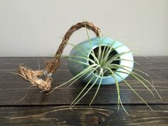 Turquoise Ceramic Wheel Thrown Air Plant Holder by ArtByJenF