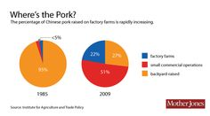Americans are eating less meat, but factory farms are humming. Chinese Pork, Factory Farming, Mother Jones, White Meat, Farms, Infographics, China, Learning, Homesteads