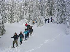 Hike @Sovereign Lake Nordic Centre - Vernon Outdoor Club.