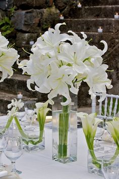 all white lillies--one of my absolute favorites