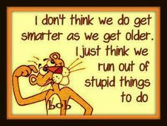 i dont think we get smarter funny quotes quote lol funny quote funny quotes humor Great Quotes, Me Quotes, Funny Quotes, Funny Memes, Inspirational Quotes, Smart Quotes, Sarcastic Quotes, It's Funny, Funny Cartoons